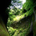 The Stillness: Basho's Poetics